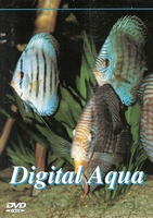 DVD Digital Aqua